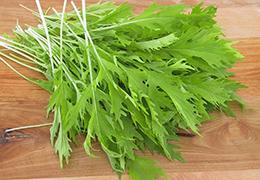 Листовые салаты и их виды
