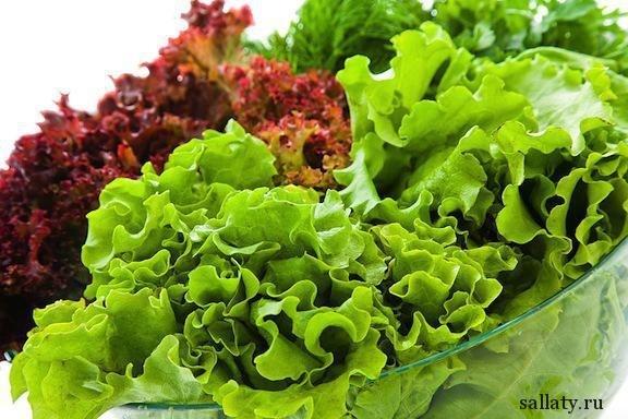 Зеленый салат-коктейль